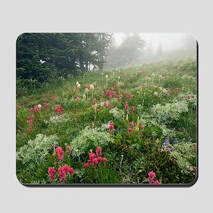 Mountain meadow in the mist Mousepad