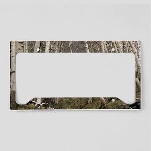 Mount Etna birches (Betula ae License Plate Holder