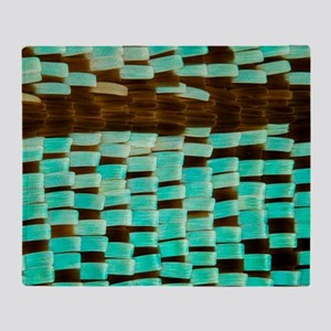 Moth wing scales, light micrograph Throw Blanket