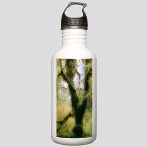 Moss-covered tree Stainless Water Bottle 1.0L