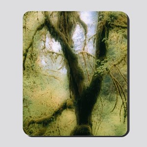 Moss-covered tree Mousepad