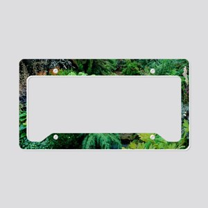 Mixed plants in a greenhouse License Plate Holder