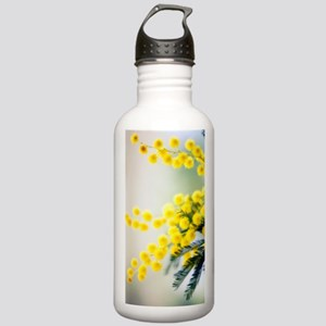 Mimosa (Acacia dealbat Stainless Water Bottle 1.0L