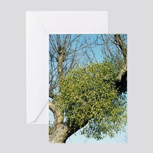 Mistletoe Greeting Card