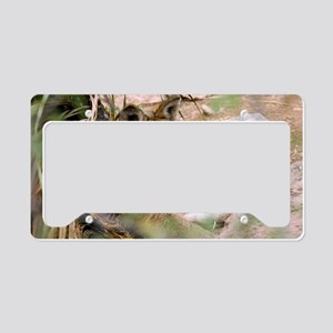 Mexican Gray Wolf License Plate Holder
