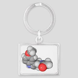Melatonin hormone molecule Landscape Keychain
