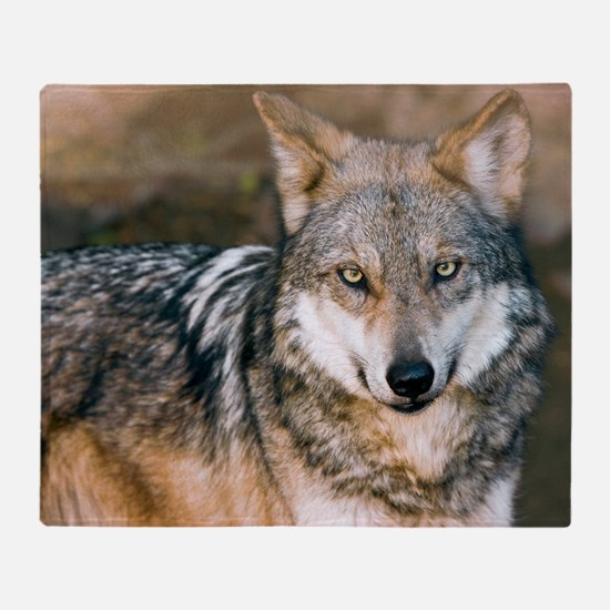 Mexican Gray Wolf Throw Blanket