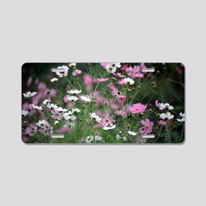 Mexican aster (Cosmos bipin Aluminum License Plate