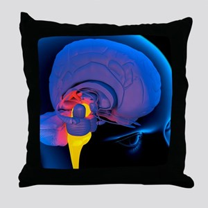 Medulla oblongata in the brain, artwo Throw Pillow
