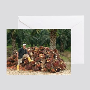 Mature man posing by oil palm fruits Greeting Card