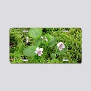Marsh violet (Viola palustr Aluminum License Plate