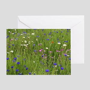 Meadow flowers Greeting Card
