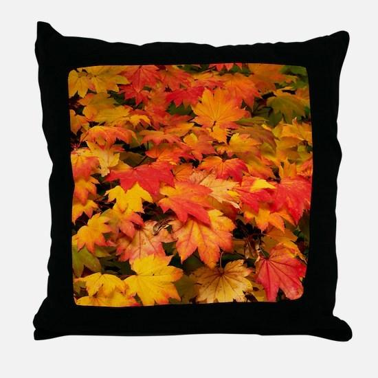 Maple (Acer japonicum vitifolia) leav Throw Pillow
