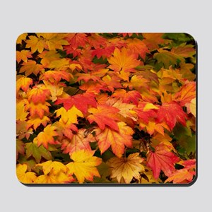 Maple (Acer japonicum vitifolia) leaves Mousepad