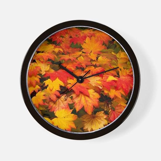 Maple (Acer japonicum vitifolia) leaves Wall Clock