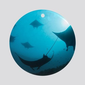 Manta rays Round Ornament