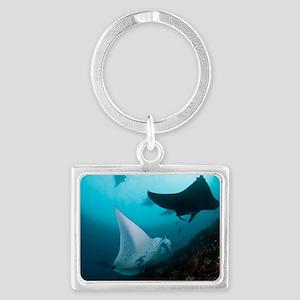 Manta rays Landscape Keychain