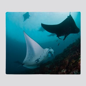 Manta rays Throw Blanket