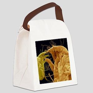 Mange mites, SEM Canvas Lunch Bag