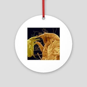 Mange mites, SEM Round Ornament