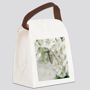 Male mayfly Canvas Lunch Bag