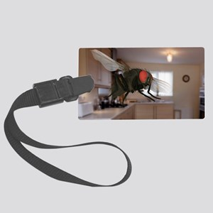 Male lesser housefly in flight,  Large Luggage Tag