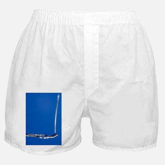Magnesium ribbon Boxer Shorts