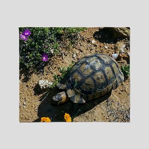 Male angulate tortoise Throw Blanket