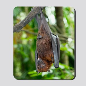 Malayan Flying Fox Mousepad