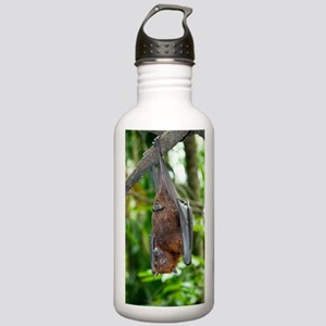 Malayan Flying Fox Stainless Water Bottle 1.0L