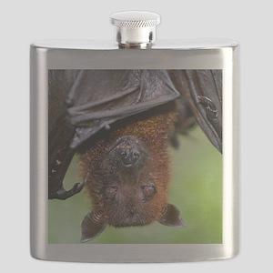 Malayan Flying Fox Flask
