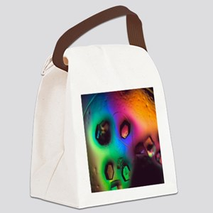 Lysozome protein crystals Canvas Lunch Bag