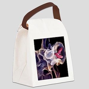 Macrophage engulfing TB bacteria, Canvas Lunch Bag
