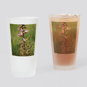 Lousewort (Pedicularis petiolaris) Drinking Glass