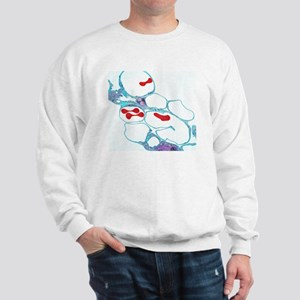 Lung alveoli and red blood cells, TEM Sweatshirt