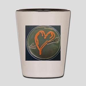 Love, microbial art Shot Glass