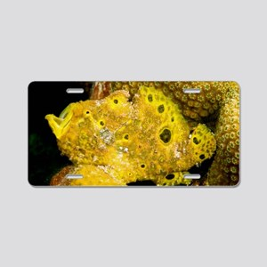 Longlure frogfish Aluminum License Plate