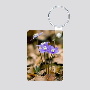 Liverleaf (Hepatica nobili Aluminum Photo Keychain
