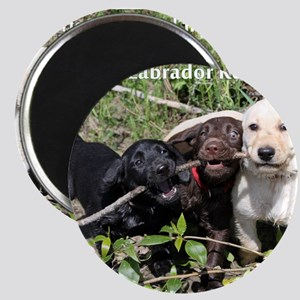 Eromit- Lab puppies Magnet