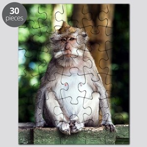 Long-tailed macaque Puzzle
