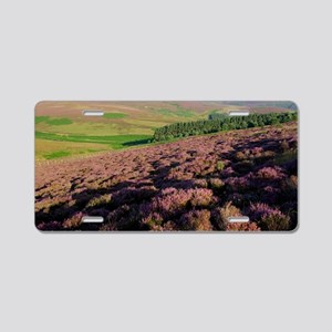 Ling heather (Calluna vulga Aluminum License Plate