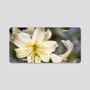 Lily (Lilium 'Apollo') Aluminum License Plate
