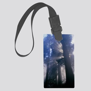 Light coming through redwood tre Large Luggage Tag