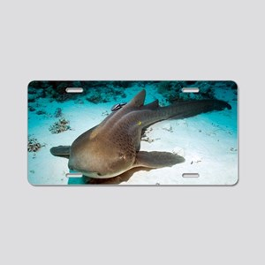 Leopard shark and remora Aluminum License Plate