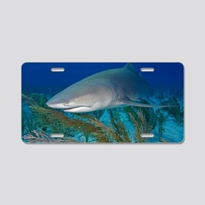 Lemon shark Aluminum License Plate