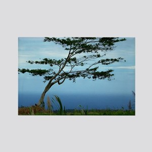Lone Tree Rectangle Magnet
