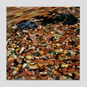 Leaves floating on river water Tile Coaster