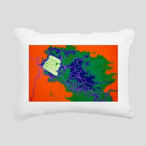 Legionella bacteria Rectangular Canvas Pillow