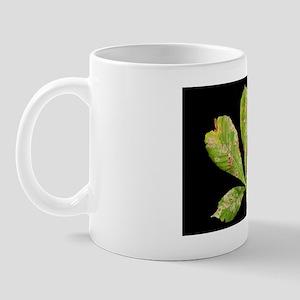 Leaf miner moth damage Mug