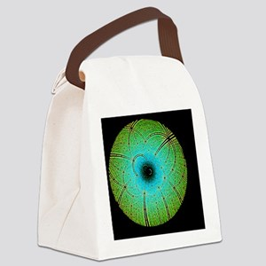 Laue diffraction of enzyme Rubisc Canvas Lunch Bag